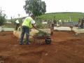 Limpeza cemitério Paiolinho 5